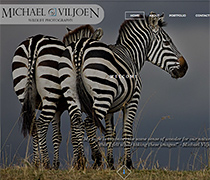 Michael Viljoen Wildlife Photography - CMS website